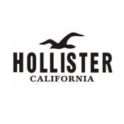 Hollister (3)