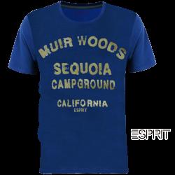 ~Esprit Sequoia CampGround Blue WIth Golden Print Tshirt